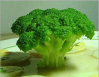 Broccoli seed extract(DL-SULFORAPHANE0.3%) of picture