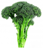 Broccoli seed extract(Sulforaphane 1%) of picture